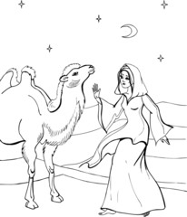 A camel with a beautiful woman. Coloring book.  36
