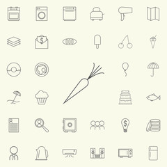 carrot icon. web icons universal set for web and mobile