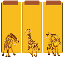 Different post of giraffe on banner