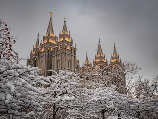 Wall Murals Place of worship The LDS Temple in Salt Lake City after a snow storm