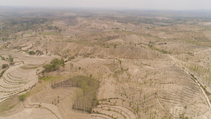 agricultural land in rural areas with farmlands, fields with crops, trees in arid hilly terrain. aerial view growing crops in asia in hilly areas Indonesia.