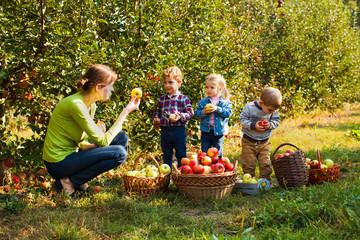 Teacher with preschoolers in the apple garden