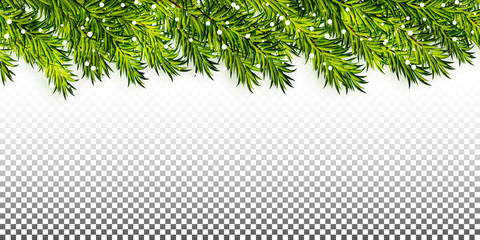 Christmas tree branches frame on transparent background vector