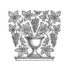 Рисунок, декоративная ваза, виноградные гроздья и листья. Чёрно-белая иллюстрация.