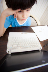 distance learning, a boy with computer