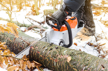 Hands of a man holding an electric saw, cuts a tree in the winter forest. Deforestation. Harvesting wood. Scaffolding