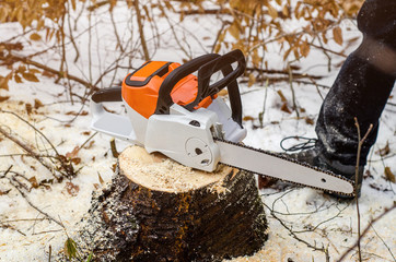 Electric chainsaw stands on a stump of freshly cut wood in a winter forest. Logging, logger. Deforestation. Harvesting wood. Scaffolding