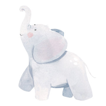 Watercolor baby elephant illustration