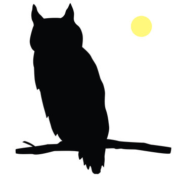 Animals-Sitting Owl Silhouette on a Tree Branch