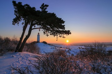 beautiful view to the romantic winter landscape on the gorgeous German island Hiddensee by the Baltice Sea