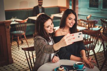 Beaufitul smiling girlfriends taking selfie
