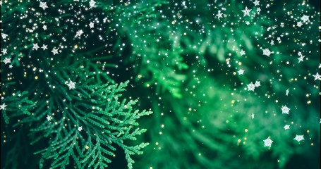 Christmas background with fir branches and snowflakes. New year texture.