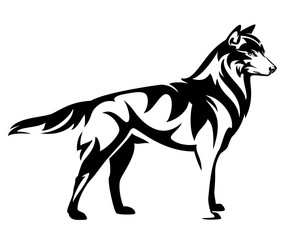 standing wild wolf back and white vector side view outline