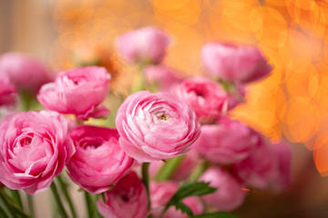 Persian buttercup. Bunch Crimson pink ranunculus flowers in Glass vase. Garland bokeh on background. Wallpaper