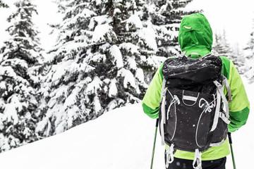 Winter hike in white snowy woods