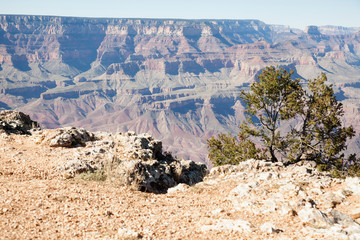 view of Grand Canyon from Navajo Point  lookout