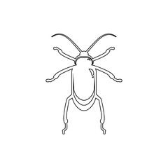 beetle icon. Element of insect for mobile concept and web apps icon. Thin line icon for website design and development, app development