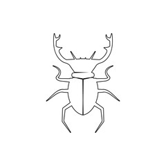 beetle deer icon. Element of insect for mobile concept and web apps icon. Thin line icon for website design and development, app development