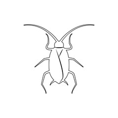 cockroach icon. Element of insect for mobile concept and web apps icon. Thin line icon for website design and development, app development