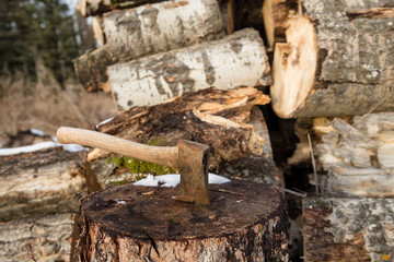 small axe in a woodcutter's block