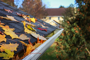 Autumn leaves in a rain gutter on a roof, Shallow focus in foreground