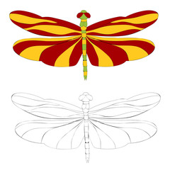 isolated, coloring book flying dragonfly