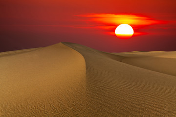 Beautiful sunset in the desert. Sand dune on the background of the setting sun.