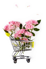 Pink rose flowers in a small shopping cart on the white background.