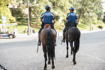 Horse Mounted Policemen guarding the streets of the city. The policemen are seen wearing uniform and riding horses. On the background, city buildings are seen.