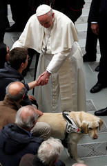 Pope Francis greets a blind man and his guide dog during the weekly general audience at Paul VI hall at the Vatican