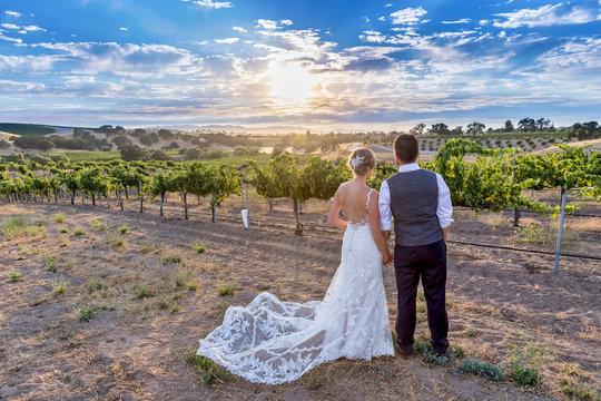 Couple Looking Ahead in Vineyard