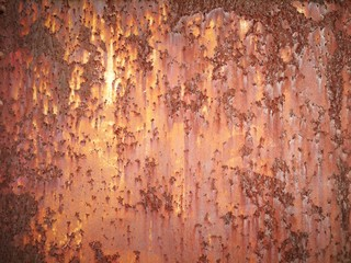 Wall Mural - rusty metal background