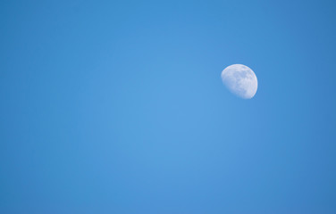 Moon in the day time on blue sky background.