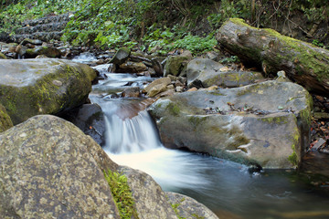 mountain river flowing through the forest system of the Carpathian cascades Wall mural
