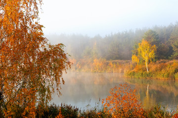 A beautiful autumn river is wrapped in fog. On the shore are yellow trees