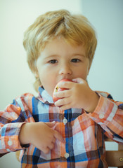 Portrait of a cute schoolboy with red apple on a white background. Little blond boy with red delicious apple fruit. Cute child portrait eating apple indoor.
