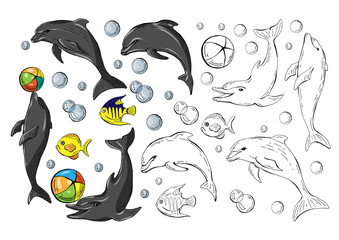 Set of colored dolphins and fish isolated on white background and monochrome copy , vector