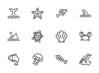 Sea creatures line icon set. Set of line icons on white background. Maritime concept. Shell, turtle, fish, whale.  Vector illustration can be used for topics like sea, ocean