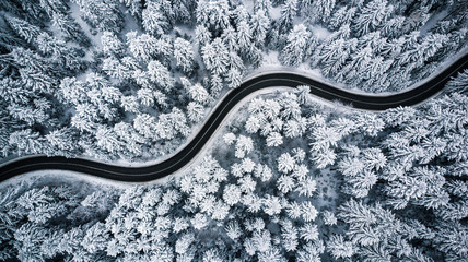 Curvy windy road in snow covered forest, top down aerial view Wall mural