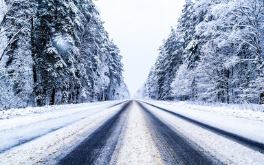 winter day in the forest, trees covered with snow, the sky is visible, snow-covered asphalt road goes deep into the forest
