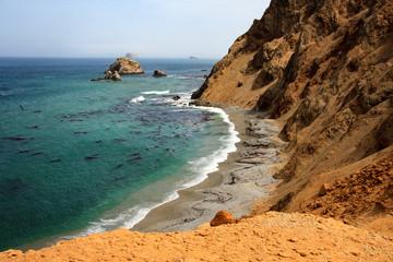 Landscape in Peru, wildlife in Latin america. Paracas reserve between desert and ocean