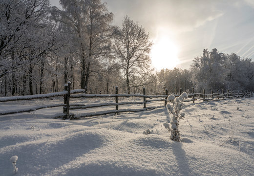 winter landscape during heavy snowfall