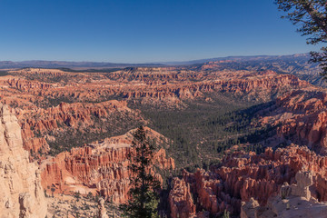 view of bryce canyon in utah usa