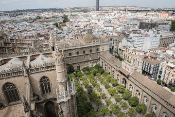 Image of Seville Cathedral is seen on this picture. Seville Cathedral is an old cathedral in Seville, Spain. It boasts of magnificient architecture dating back to medieval era.