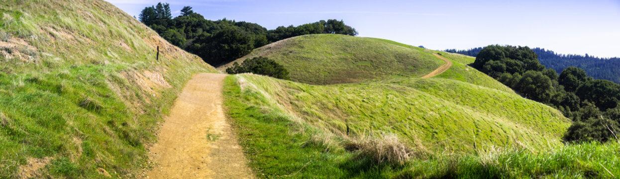 Hiking trail through verdant green hills in Santa Cruz mountains, San Francisco bay area, California