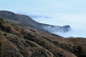 Foggy Day Coastline