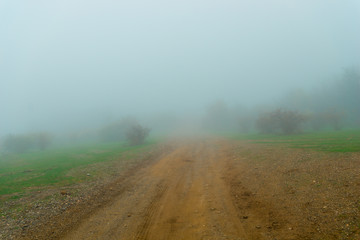 Goose fog and dirt road. Autumn landscape on a foggy day