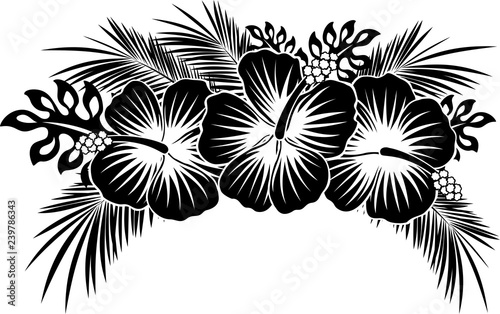 Hibiscus Flowers With Tropical Leaves In Black And White Stock