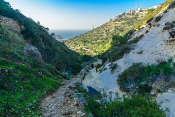 Wadi Siah in Haifa