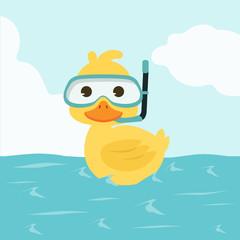 Duck Snorkeling in Sea